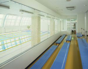 zip_a_gally1
