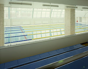 zip_a_gally2
