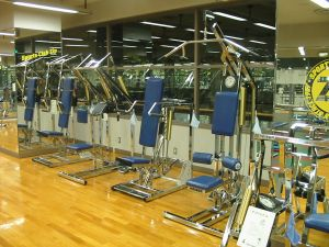 zip_h_gym11